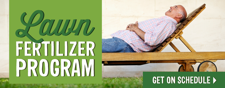 Lawn Fertilizer Program